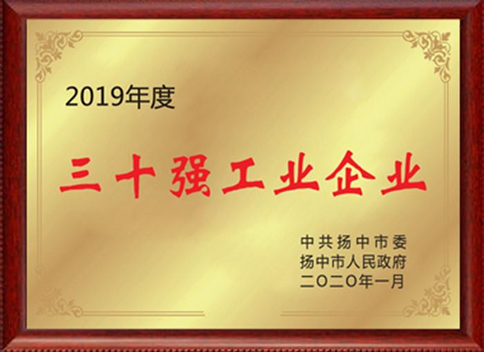 """2019年度""""扬中市工业三十强"""""""